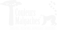 Couleurs Malgaches
